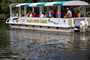 Black-River-Safari-Jamaica