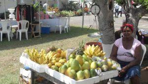 market-at-the-lawn-devon-house
