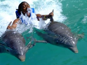swimming-with-dolphins